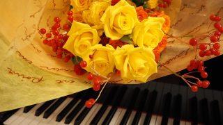 ピアノ教室 - 成人 - 月間授業料