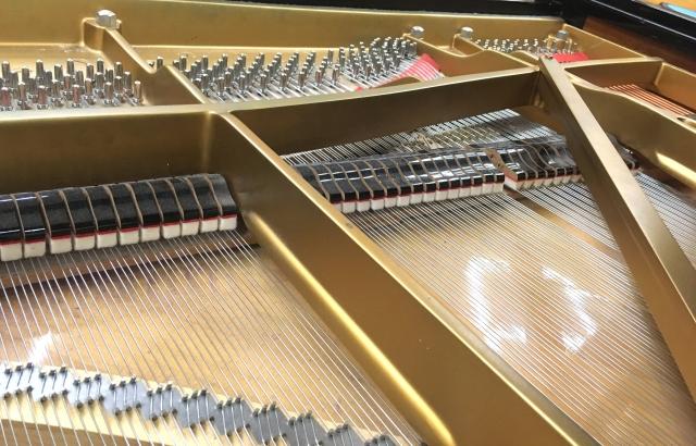 ピアノ教室 大人 月謝